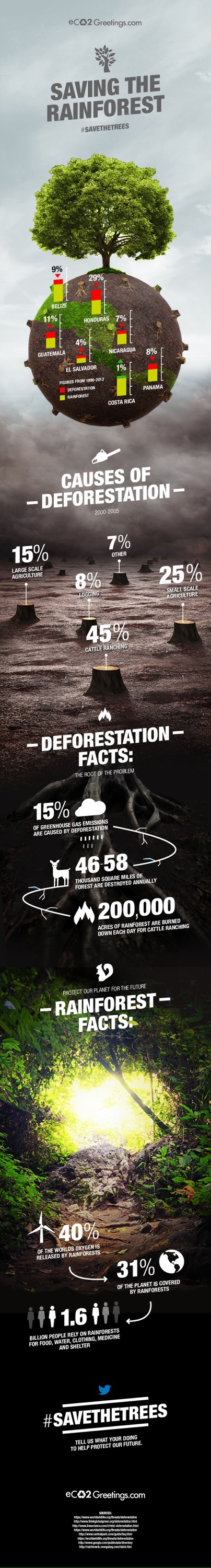 real reasons,deforestation, amazon, beef,cattle