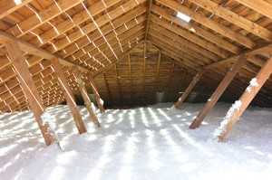 Bottom line, if you do nothing else, please be sure you have a significant amount of insulation in your attic. More heating and cooling goes through the roof in most improperly insulated homes than you'd think!