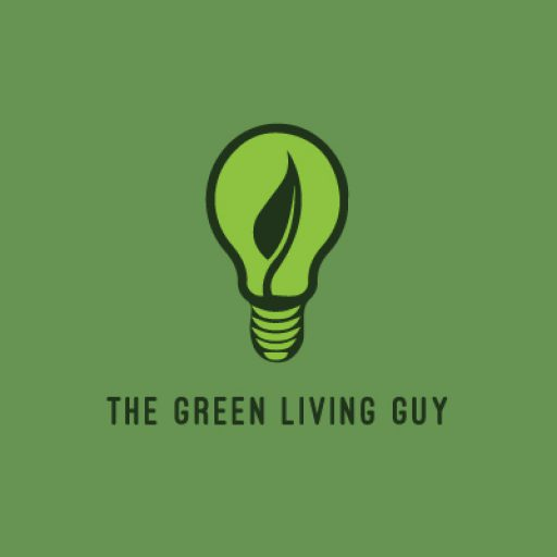 . Electric Car Expert, Green Living Guru, Green Building Design